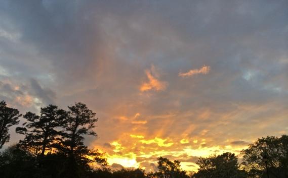 Choose Good Stuff - Sunset