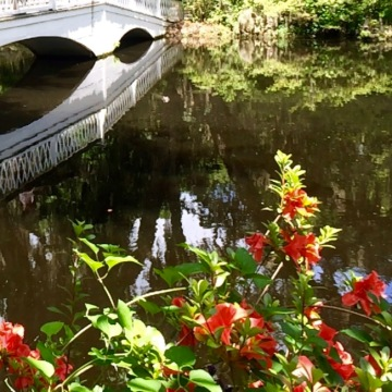 Bridge, Lake and Flowers in SC